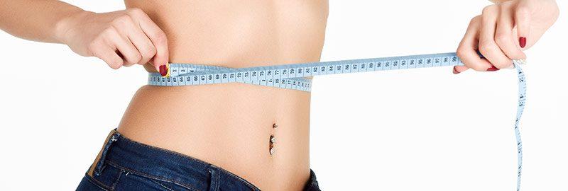 Cacti-Nea Manipulado para perda de peso